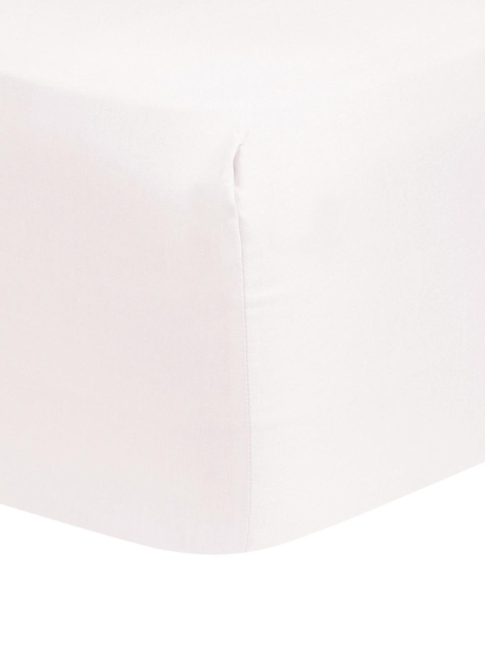 Spannbettlaken Comfort in Rosa, Baumwollsatin, Webart: Satin, leicht glänzend, Rosa, 180 x 200 cm
