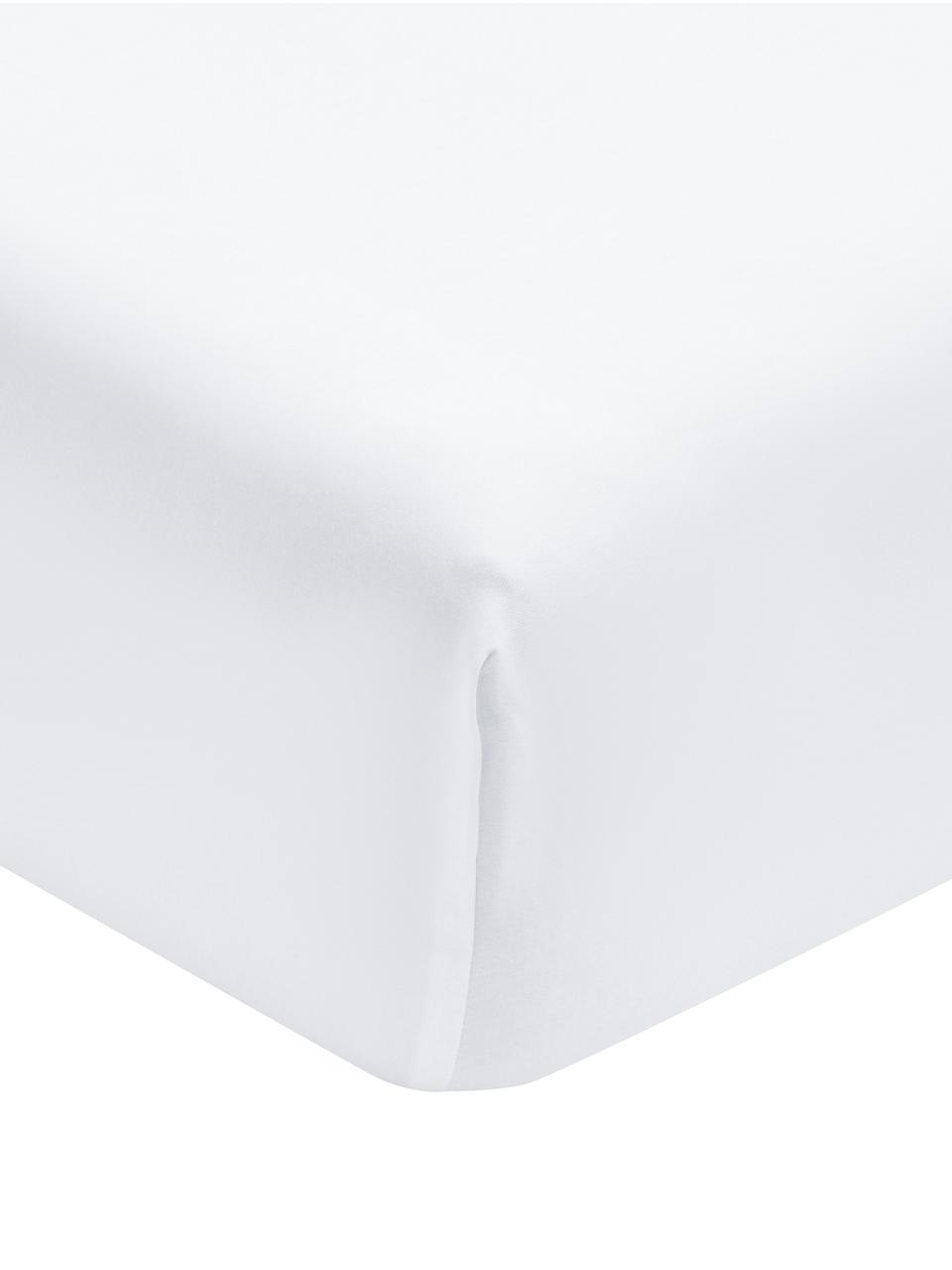Lenzuolo con angoli in  raso di cotone Premium, Tessuto: raso, leggermente lucido, Bianco, Larg. 180 x Lung. 200 cm