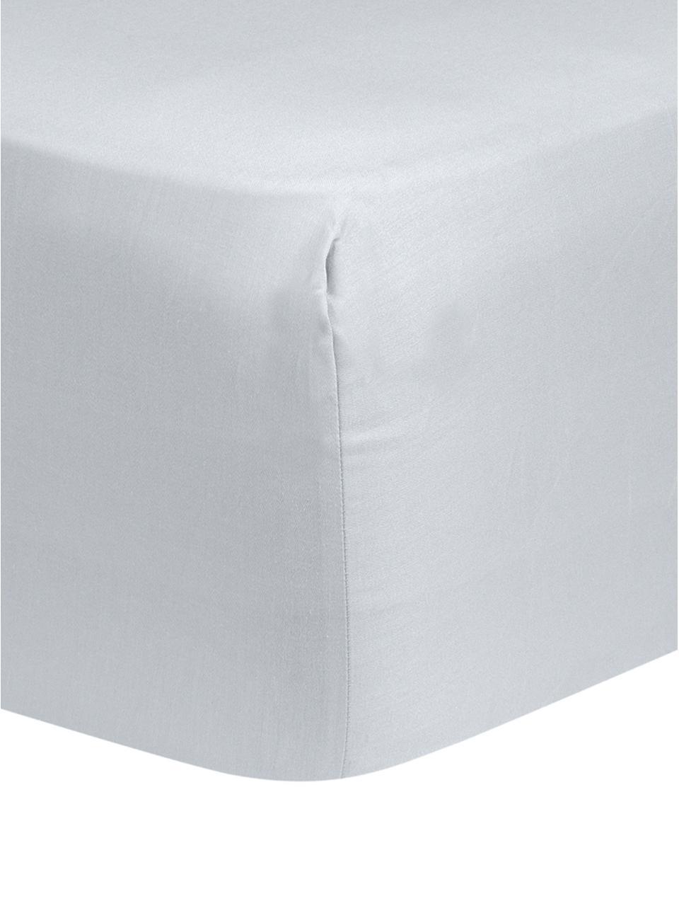 Spannbettlaken Comfort in Hellgrau, Baumwollsatin, Webart: Satin, leicht glänzend, Hellgrau, 160 x 200 cm