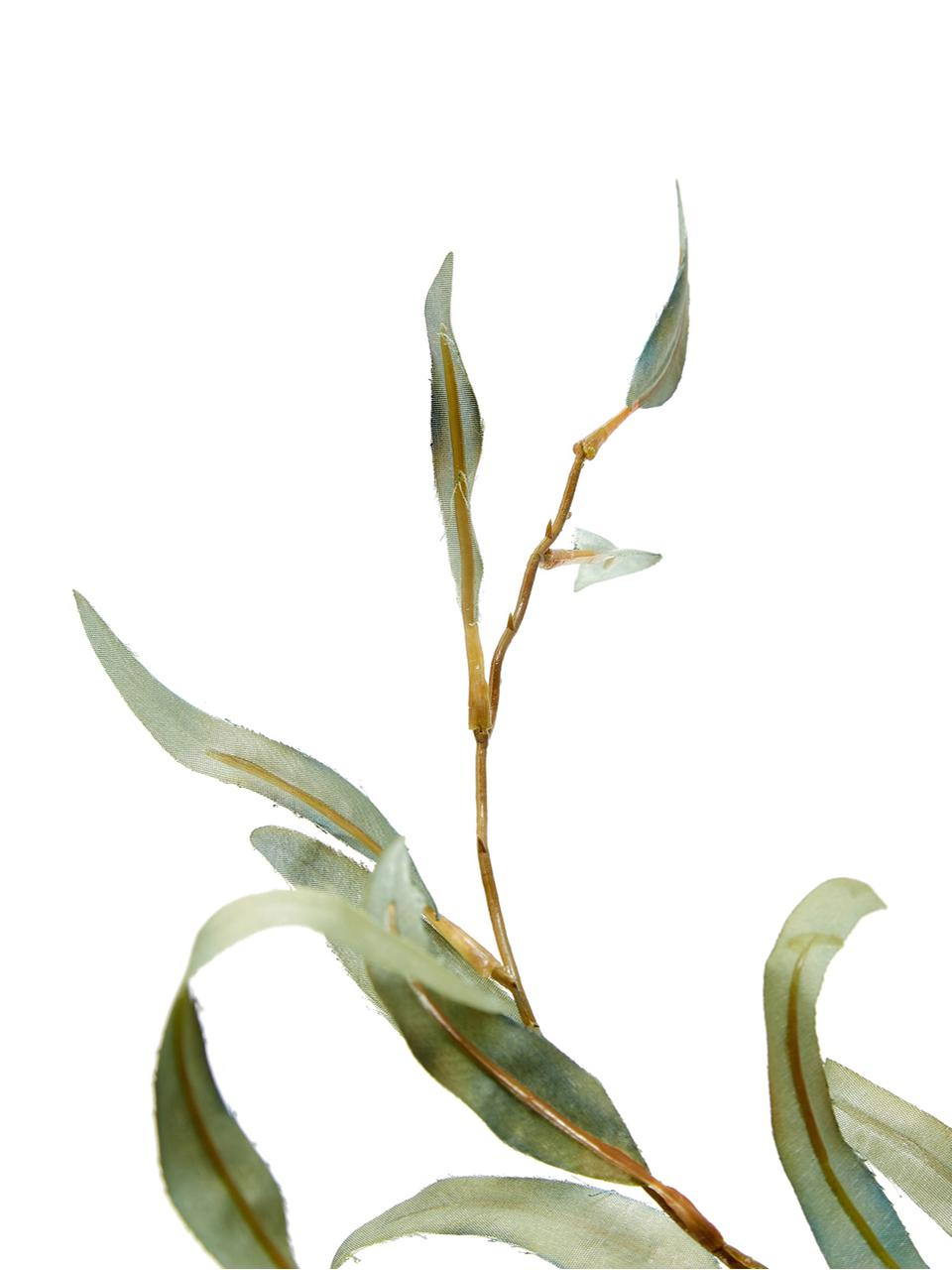 Kunstbloem Eucalyptus Pati, Kunststof, Groen, L 96 cm