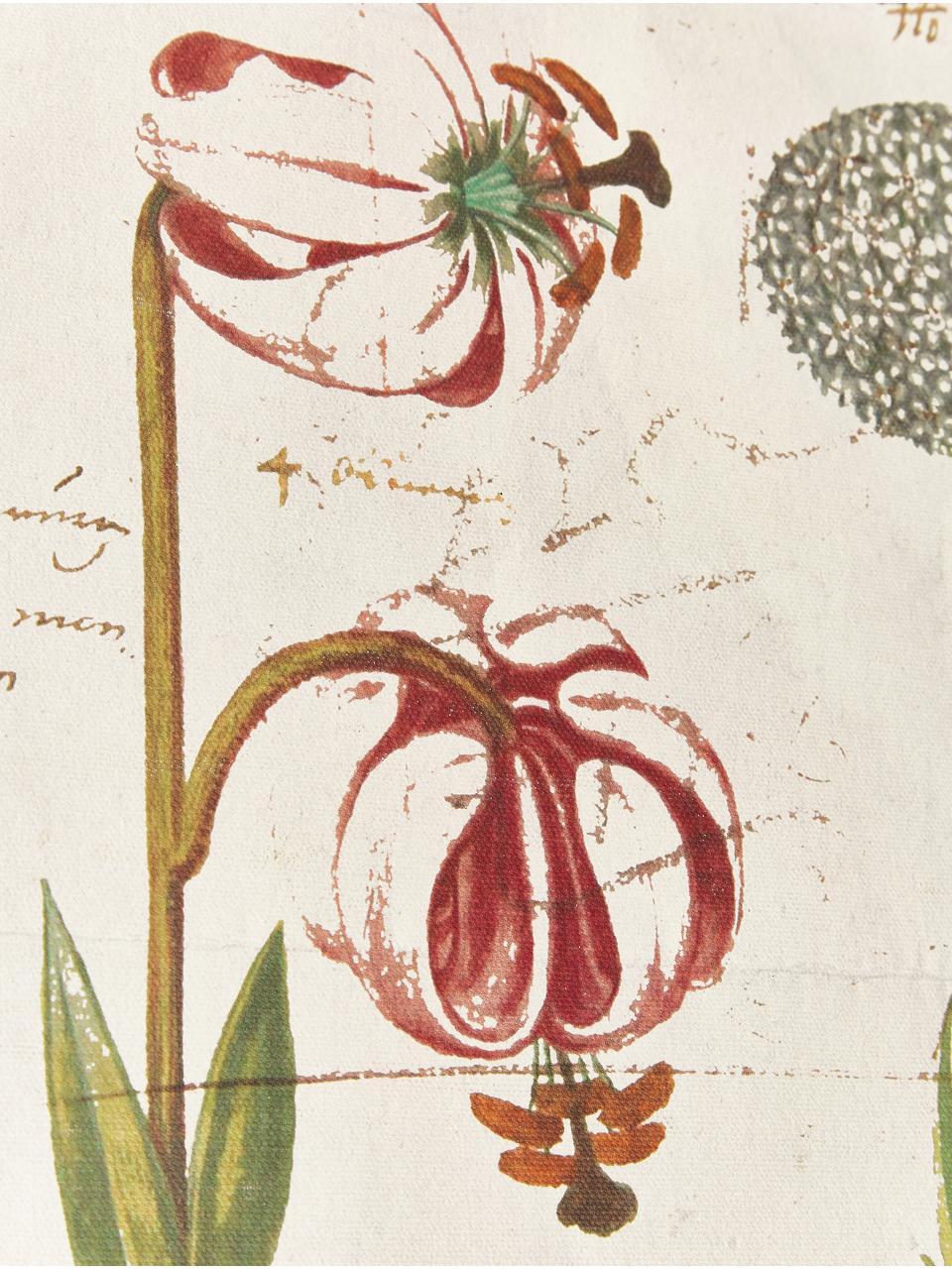 Digitaldruck auf Leinwand Botanic, Digitaldruck auf Leinwand, Mehrfarbig, 70 x 50 cm