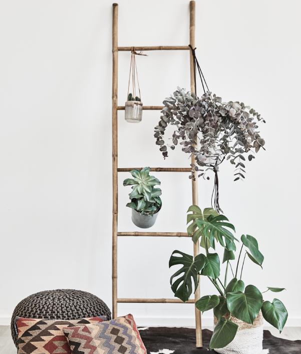 Urban Jungle Einrichtung Interior Trend