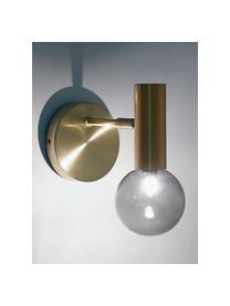 Applique dorato in vetro Wilson, Paralume: Vetro, Ottone, Ø 10 x Alt. 22 cm