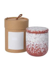 Duftkerze Maple Walnut, Behälter: Keramik, Rot, Weiß, Ø 8 x H 9 cm