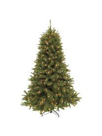 Albero di Natale con luci LED Forest, Verde scuro, Ø 119 x Alt. 155 cm