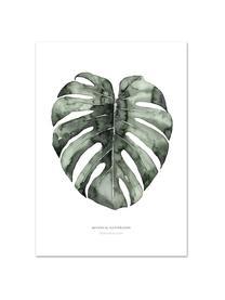 Poster Urban Monstera, Digitale print op papier, 200 g/m², Wit, groen, 21 x 30 cm