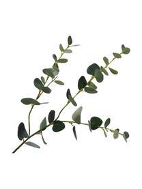 Květinová dekorace Eukalyptus, Zelená