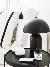 Kleines Vasen-Set Esko aus Porzellan, 3-tlg., Porzellan, Weiß, Sondergrößen