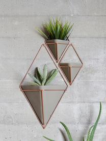 Wandaufbewahrungs-Schale Trigg aus Beton, 2 Stück, Aufbewahrung: Beton, Grau, Kupfer matt, 11 x 18 cm