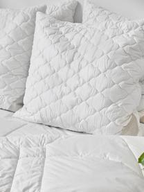 Vegane Bettdecke mit Kapokfaser und Baumwolle, warm, Bezug: 100% Baumwolle, Weiß, 240 x 220 cm