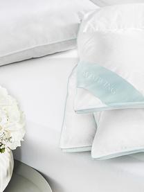 Feder-Kopfkissen Comfort, mittel, Hülle: 100% Baumwolle, Mako-Köpe, Weiß mit türkiser Satinbiese, 40 x 80 cm
