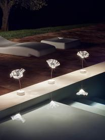 Lampada da tavolo portatile e dimmerabile Lafleur, Paralume: Lentiflex, Asta: rame, Trasparente, Ø 15 x Alt. 26 cm