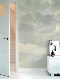 Fototapeta Golden Age Clouds, Włóknina, przyjazna dla środowiska, biodegradowalna, Szary, beżowy, matowy, S 196 x W 280 cm