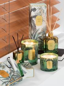 Candela profumata a due stoppini Tropical Jungle, Contenitore: vetro, Verde, dorato, Ø 11 x Alt. 8 cm