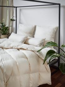 Bettdecke Premium aus Bio-Daunen und Bio-Baumwolle, mittel, Bezug: 100% Bio-Baumwolle, GOTS , Beige, 240 x 220 cm