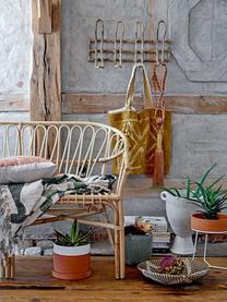 Wand-Garderobenleiste Aga mit 4 Haken, Schilfrohr, naturbelassen, Beige, 52 x 27 cm