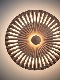 Applique a LED di design Phinx, Struttura: alluminio rivestito, Marrone chiaro, Ø 32 x Prof. 5 cm