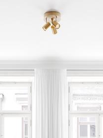 Kleine plafondspot Correct in goudkleur, Baldakijn: gecoat metaal, Goudkleurig, Ø 20 x H 14 cm