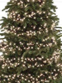 LED-Lichterkette Belek, warmweiß, Kunststoff, Schwarz, L 800 cm