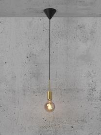 Kleine Pendelleuchte Paco, Baldachin: Metall, Messing, Ø 4 x H 17 cm