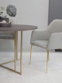 Chaise en velours gris pieds dorés Ava, Velours gris, pieds or