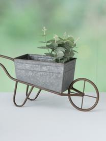 Taczka dekoracyjna XL do roślin Marusa, Metal ocynkowany, Cynk, S 54 x W 21 cm
