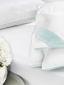 Reine Daunen-Bettdecke Premium, extra warm, Hülle: 100% Baumwolle, feine Mak, Weiß, 135 x 200 cm