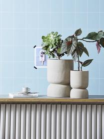Grote plantenpot Ajonu van keramiek, Keramiek, Beige, Ø 19 x H 28 cm