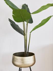 Plantenpottenset Chimp van metaal, 2-delig, Gecoat metaal, Messingkleurig, zwart, Set met verschillende formaten