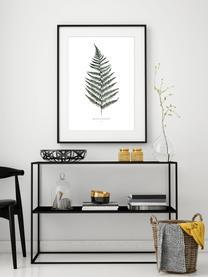 Poster Fern, Digitale print op papier, 200 g/m², Wit, groen, 21 x 30 cm