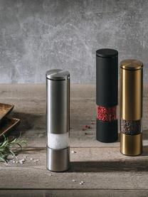 Gewürzmühle Sheda, Korpus: Acrylglas, Edelstahl, bes, Mahlwerk: Keramik, Kunststoff, Messingfarben, Ø 5 x H 22 cm