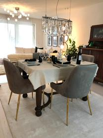 Sedia imbottita in velluto con gambe dorate Ava, Rivestimento: velluto (100% poliestere), Gambe: metallo zincato, Velluto grigio, Larg. 53 x Prof. 60 cm