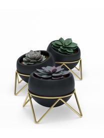 Übertopfe Potsy aus Keramik, 3 Stück, Übertopf: Keramik, Gestell: Metall, vermessingt, Schwarz, Ø 14 x H 11 cm