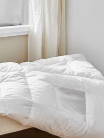 Daunen-Bettdecke Clima Balance, extra leicht, Hülle: Feinste Mako-Einschütte a, Weiß, 240 x 220 cm