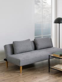 Slaapbank Lucca (2-zits) in grijs, Bekleding: 100% polyester, Poten: rubberboom, Grijs, 180 x 86 cm
