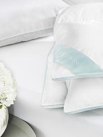 Reine Daunen-Bettdecke Premium, mittel, Hülle: 100% Baumwolle, feine Mak, Weiß, 135 x 200 cm