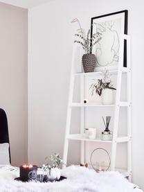 Estantería escalera Wally, Tablero de fibras de densidad media(MDF) pintado, Blanco, alto brillo, An 63 x Al 180 cm