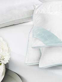 Reine Daunen-Bettdecke Premium, extra leicht, Hülle: 100% Baumwolle, feine Mak, extra leicht, 135 x 200 cm