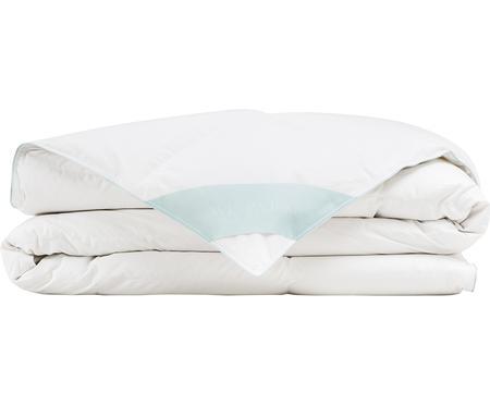 Reine Daunen-Bettdecke Premium, leicht