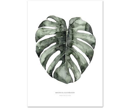 Póster Urban Monstera
