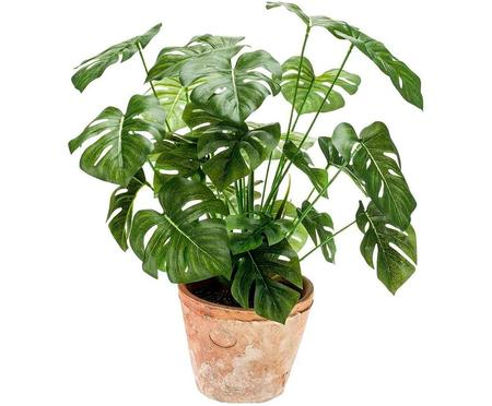 Planta artificial Monstera