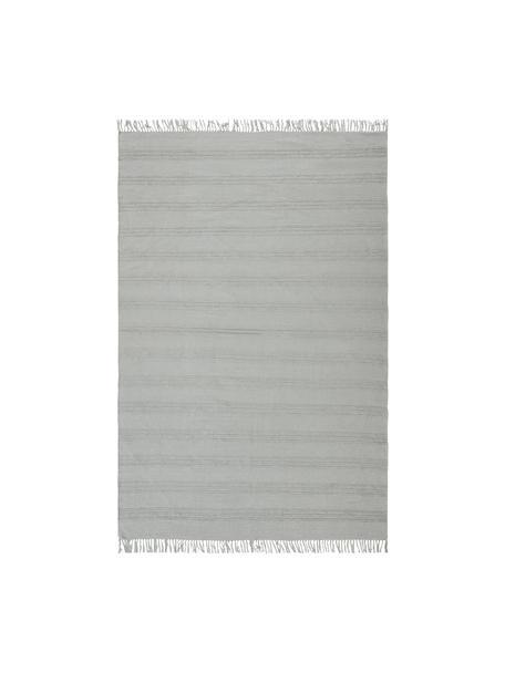Baumwollteppich Tanya mit Ton-in-Ton-Webstreifenstruktur und Fransenabschluss, 100% Baumwolle, Hellgrau, B 200 x L 300 cm (Größe L)