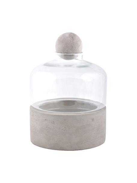 Anzuchtflasche Budi, Grau, Transparent, Ø 18 x H 24 cm