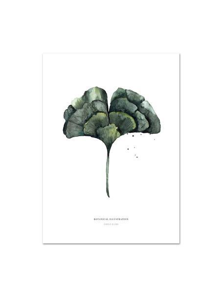 Poster Ginko, Digitale print op papier, 200 g/m², Wit, groen, 21 x 30 cm