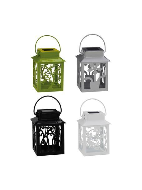 Set 4 lanterne solari a LED Garden-Lantern, Lanterne: metallo rivestito, Multicolore, Larg. 8 x Alt. 13 cm