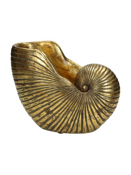 Übertopf Shell, Polyresin, Goldfarben, 25 x 19 cm
