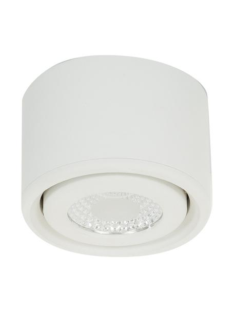 LED-Deckenspot Anzio in Weiss, Weiss, Ø 8 x H 5 cm