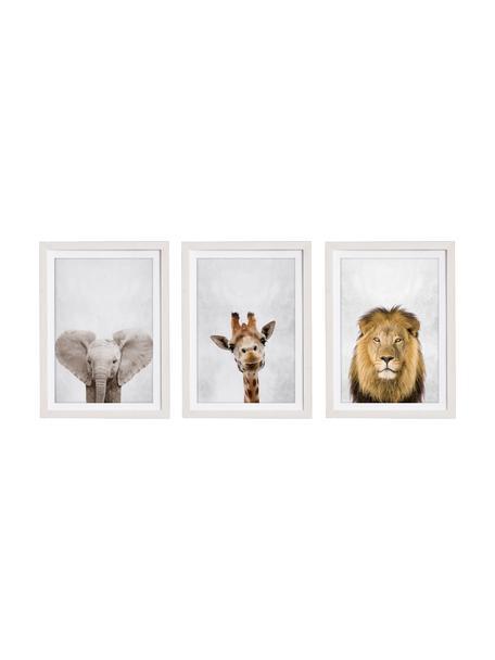Ingelijste digitale printsset Wild Animals, 3-delig, Lijst: gelakt hout, Multicolour, 30 x 40 cm