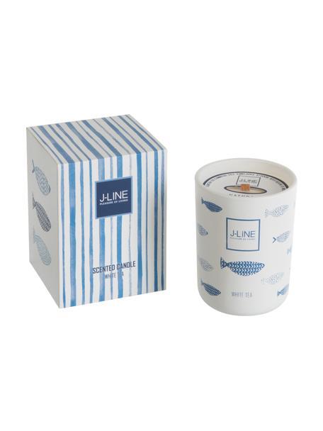 Candela profumata Fish (tè bianco), Contenitore: terracotta, Bianco, blu, Ø 9 x Alt. 12 cm