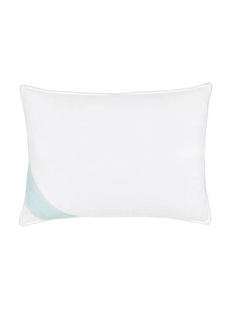 Almohada de plumas Comfort, media, Funda: 100%algodón, sarga de Ma, Blanco con ribete turquesa satinado, An 50 cm x L 70 cm